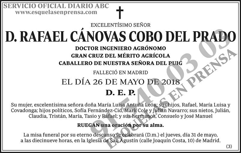 Rafael Cánovas Cobo del Prado